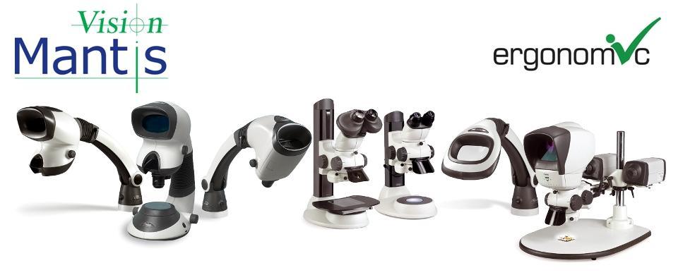 Microscópio estéreo